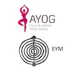Stage de Yoga : Pépites et moyens habiles
