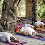 Retraite de Yoga avec Salomé Cadoux