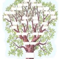 Psycho-genealogy